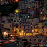 Manarola after the dusk